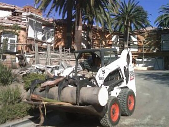 Palm-Tree-Removal-Bakersfield Tree Trimming and Stump Grinding Services-We Offer Tree Trimming Services, Tree Removal, Tree Pruning, Tree Cutting, Residential and Commercial Tree Trimming Services, Storm Damage, Emergency Tree Removal, Land Clearing, Tree Companies, Tree Care Service, Stump Grinding, and we're the Best Tree Trimming Company Near You Guaranteed!