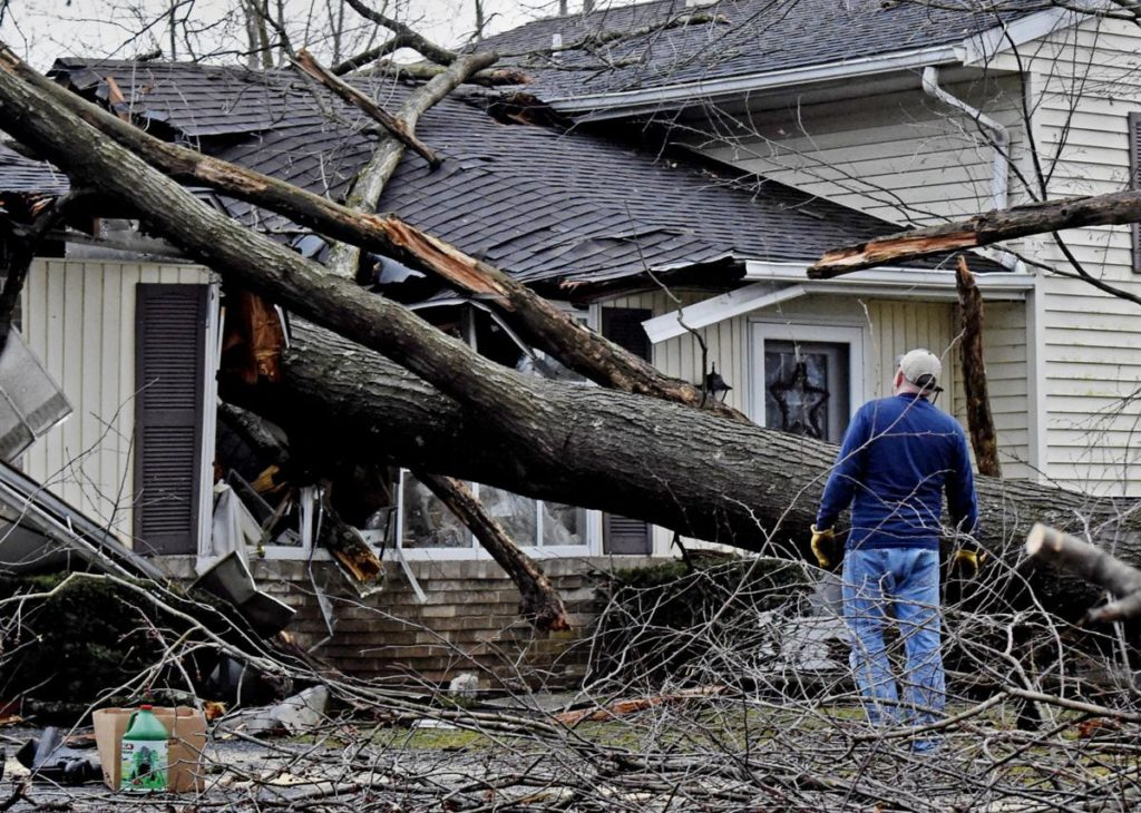 Storm-Damage-Bakersfield Tree Trimming and Stump Grinding Services-We Offer Tree Trimming Services, Tree Removal, Tree Pruning, Tree Cutting, Residential and Commercial Tree Trimming Services, Storm Damage, Emergency Tree Removal, Land Clearing, Tree Companies, Tree Care Service, Stump Grinding, and we're the Best Tree Trimming Company Near You Guaranteed!