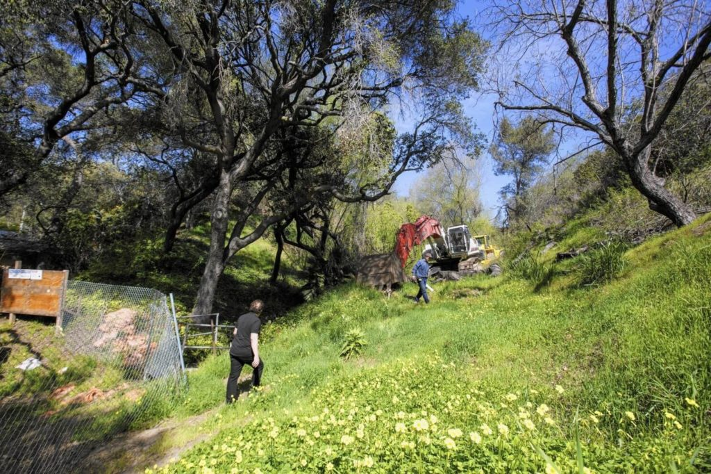 Tree-Doctor-Bakersfield Tree Trimming and Stump Grinding Services-We Offer Tree Trimming Services, Tree Removal, Tree Pruning, Tree Cutting, Residential and Commercial Tree Trimming Services, Storm Damage, Emergency Tree Removal, Land Clearing, Tree Companies, Tree Care Service, Stump Grinding, and we're the Best Tree Trimming Company Near You Guaranteed!
